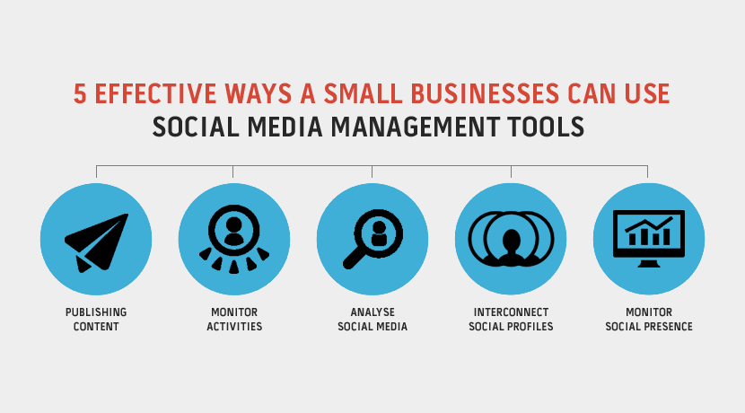 social media management tools for small businesses